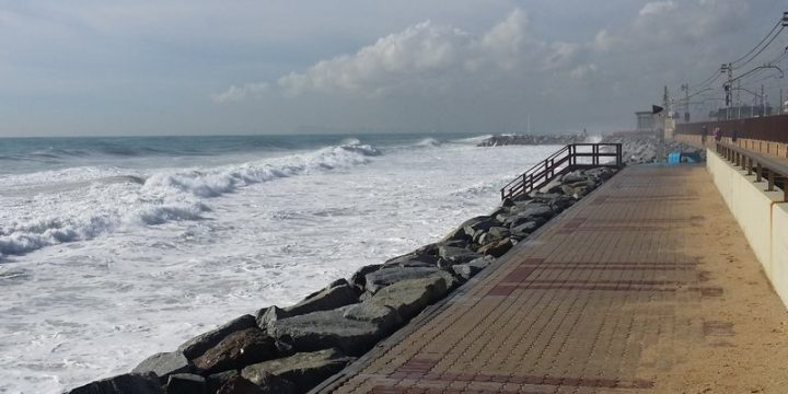 [Comunicat] La Crida demana una reunió amb la regidoria de Medi Ambient per abordar la situació de les platges premianenques